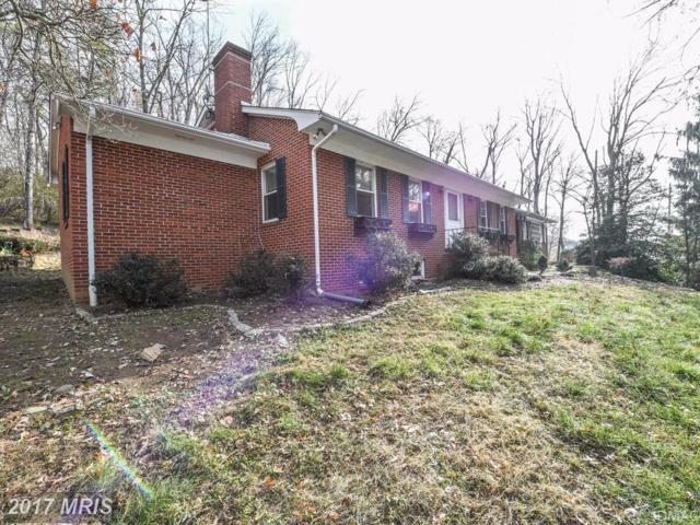 4612 Old National Pike, Middletown, MD 21769 (#FR10108552) :: Ultimate Selling Team