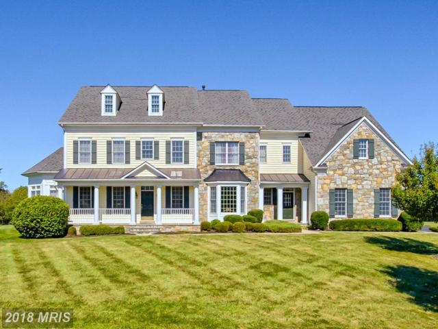 6802 Southridge Way, Middletown, MD 21769 (#FR10126480) :: Pearson Smith Realty