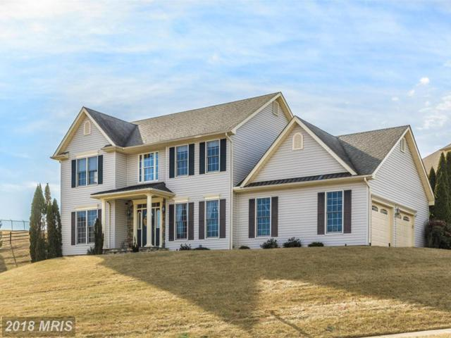 205 Layla Drive, Middletown, MD 21769 (#FR10135426) :: The Bob & Ronna Group