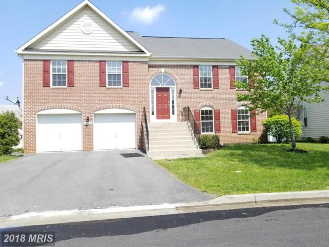 1003 Storrington Drive, Frederick, MD 21702 (#FR10218439) :: The Maryland Group of Long & Foster
