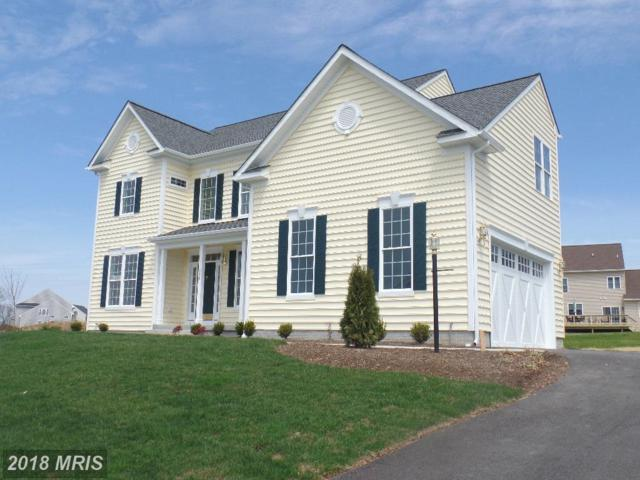 410 Richard Roberts Street, New Market, MD 21774 (#FR10225599) :: The Maryland Group of Long & Foster