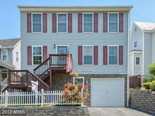 17 Terrace Avenue, Brunswick, MD 21716 (#FR10234518) :: The Gus Anthony Team