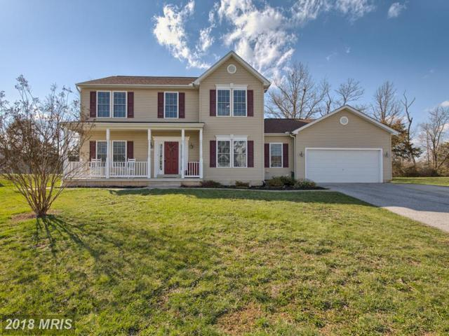 334 Mountaineers Way, Emmitsburg, MD 21727 (#FR10243904) :: Charis Realty Group