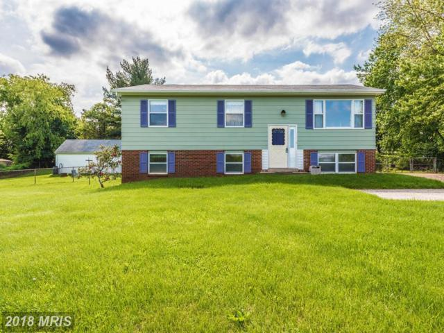 8206 James Street, Middletown, MD 21769 (#FR10246339) :: The Maryland Group of Long & Foster
