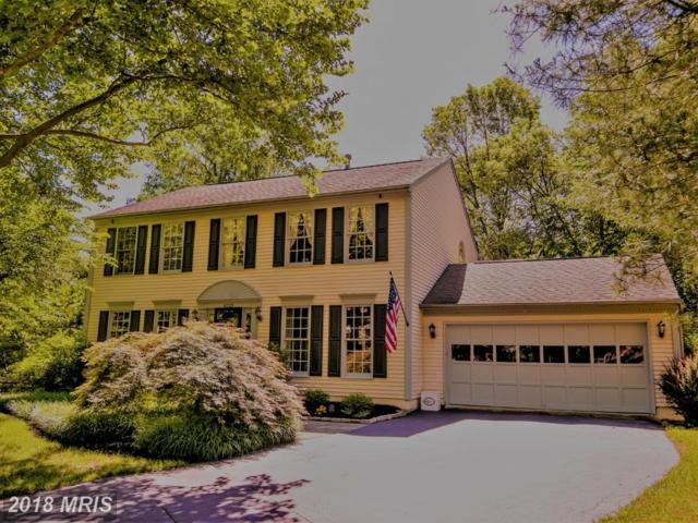 6123 Brookhaven Drive, Frederick, MD 21701 (#FR10255577) :: Advance Realty Bel Air, Inc