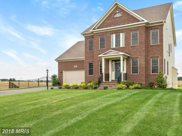 10807 Glowing Hearth Way, Monrovia, MD 21770 (#FR10275934) :: The Gus Anthony Team