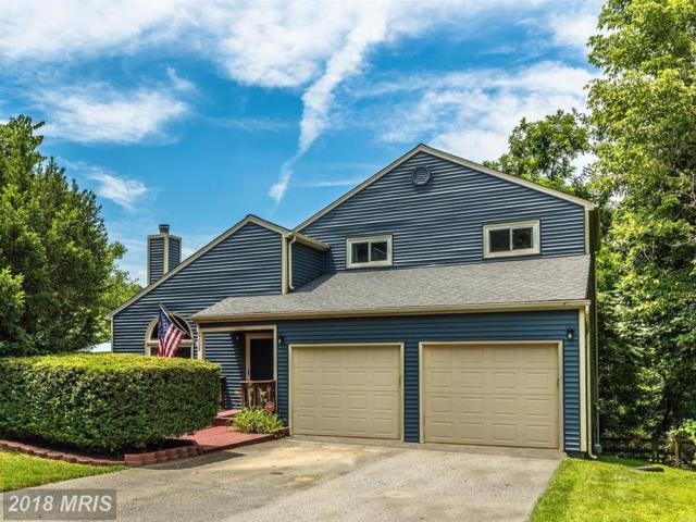 6608 Hemlock Point Road, New Market, MD 21774 (#FR10283995) :: Jim Bass Group of Real Estate Teams, LLC