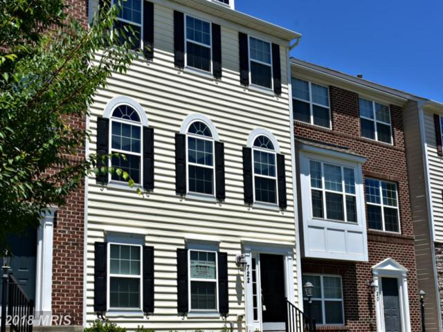 722 Sewell Drive, New Market, MD 21774 (#FR10291336) :: Charis Realty Group