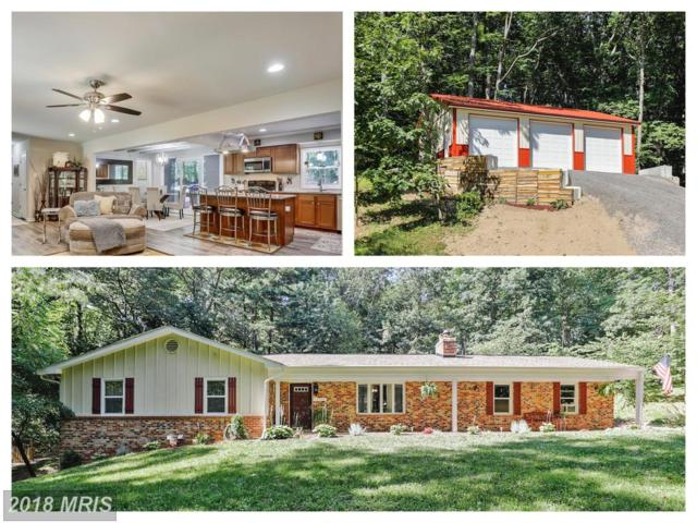 13930 Harrisville Road, Mount Airy, MD 21771 (#FR10294325) :: Blackwell Real Estate