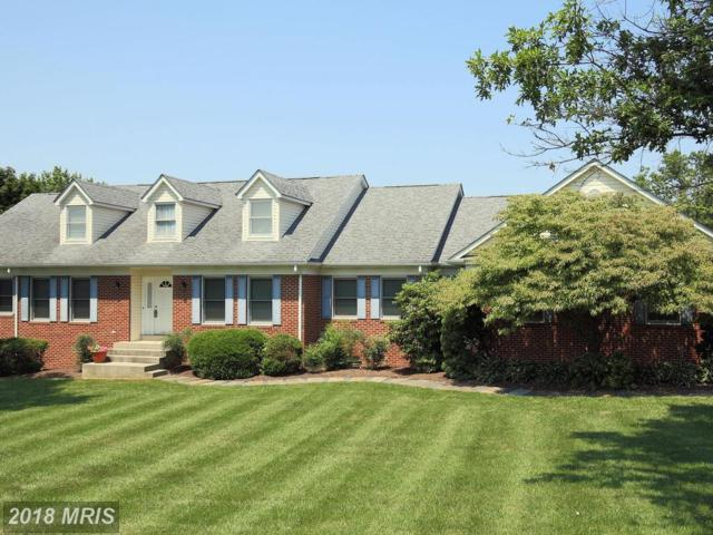 4404 Redrose Court, Middletown, MD 21769 (#FR10299552) :: ReMax Plus