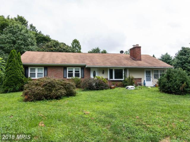 4315 Langdon Drive, Mount Airy, MD 21771 (#FR10309816) :: RE/MAX Executives