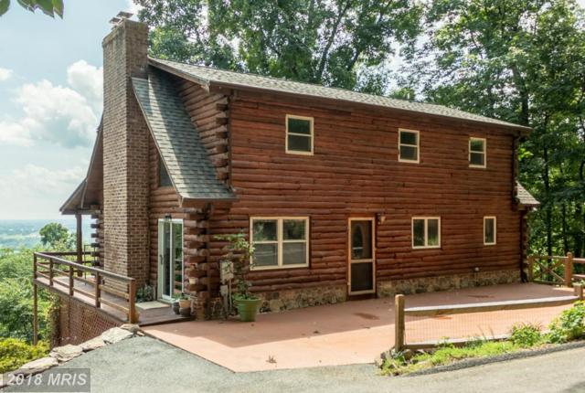 1420 Mountain Church Road, Middletown, MD 21769 (#FR10311576) :: ReMax Results
