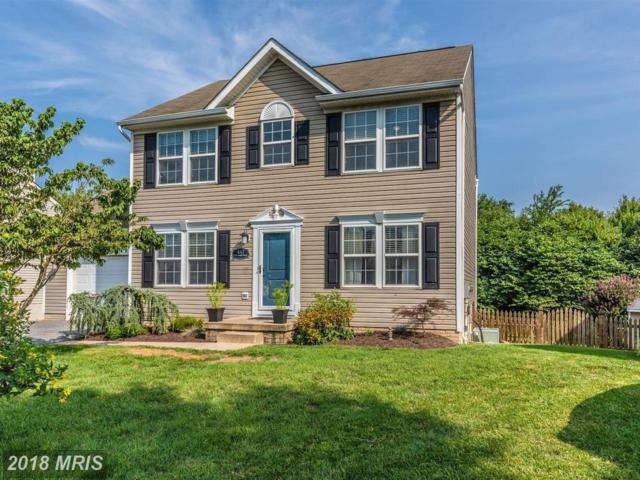 447 Delaware Road, Frederick, MD 21701 (#FR10315853) :: ReMax Results