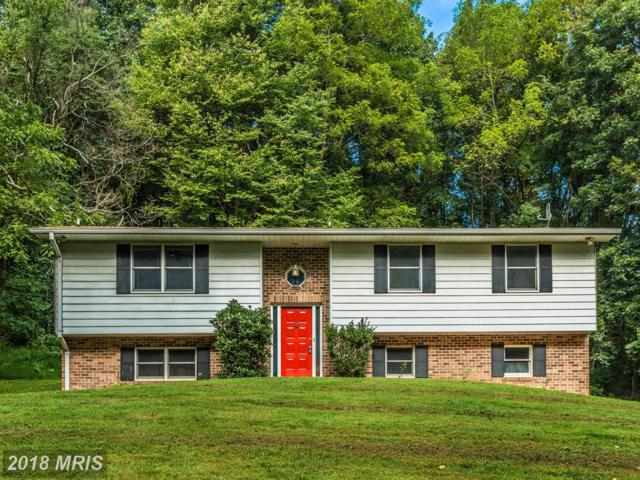 4310 Rolling Acres Court, Mount Airy, MD 21771 (#FR10315936) :: Colgan Real Estate