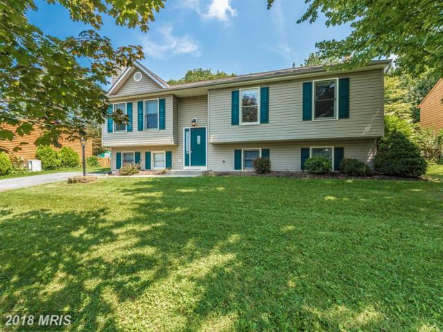 6913 Fox Chase Road, New Market, MD 21774 (#FR10317752) :: ReMax Results