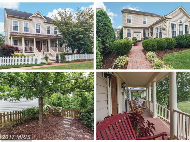 5520 Tracey Bruce Drive, Adamstown, MD 21710 (#FR9769670) :: Pearson Smith Realty