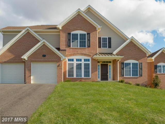 3 Gladhill Drive, Middletown, MD 21769 (#FR9839531) :: LoCoMusings
