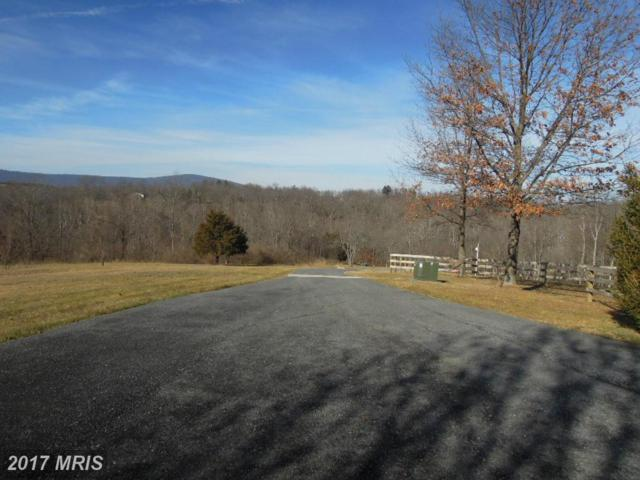 3023 Bennies Hill Road, Middletown, MD 21769 (#FR9840047) :: Pearson Smith Realty