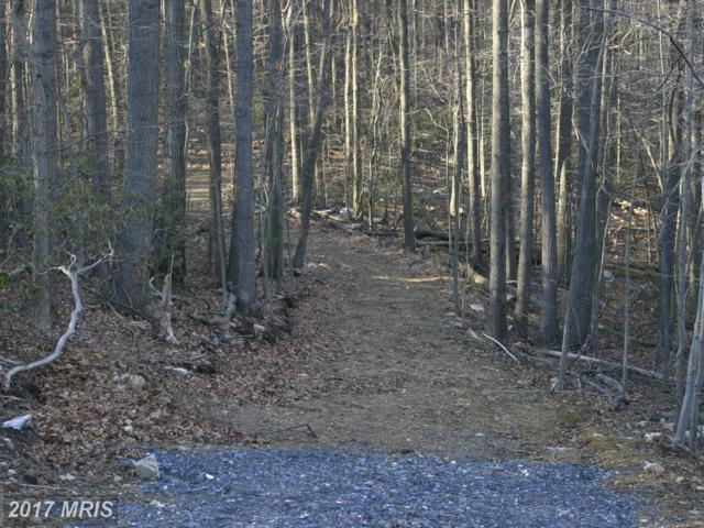 Jackson Mountain Ct., Frederick, MD 21702 (#FR9853227) :: Pearson Smith Realty