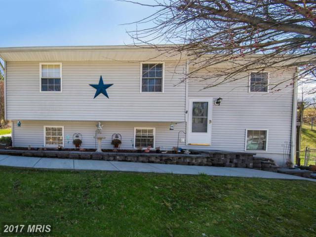 11809 Weller Road, Monrovia, MD 21770 (#FR9896148) :: Pearson Smith Realty