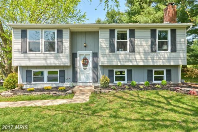 7124 Limestone Lane, Middletown, MD 21769 (#FR9913374) :: ReMax Plus