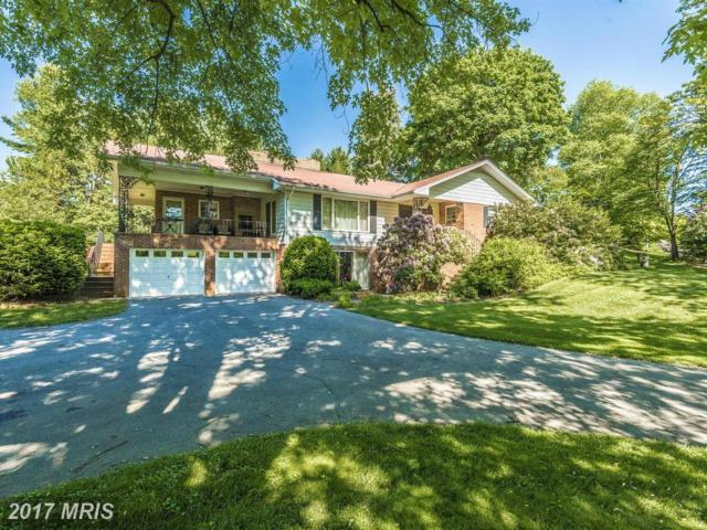 6002 Charlotte Drive, Frederick, MD 21703 (#FR9935752) :: Pearson Smith Realty