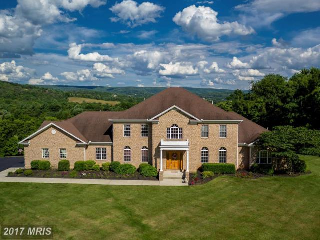 10727 Easterday Road, Myersville, MD 21773 (#FR9938226) :: Pearson Smith Realty