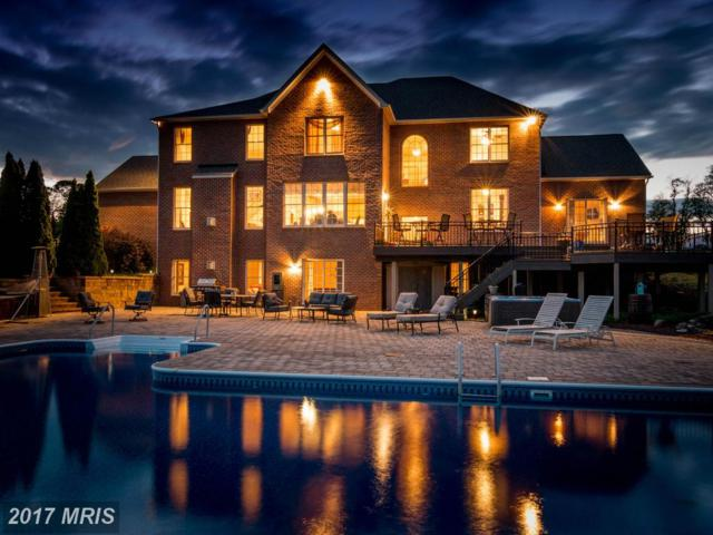 8217 Valley View Terrace, Middletown, MD 21769 (#FR9940304) :: LoCoMusings