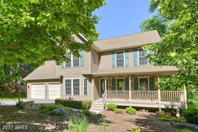6606 Rockridge Road, New Market, MD 21774 (#FR9948817) :: ReMax Plus
