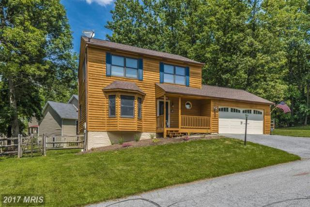 10802 Ridge Point Place, New Market, MD 21774 (#FR9949147) :: LoCoMusings
