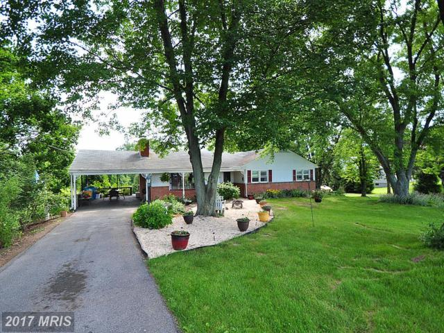 14801 Harrisville Road, Mount Airy, MD 21771 (#FR9955430) :: LoCoMusings