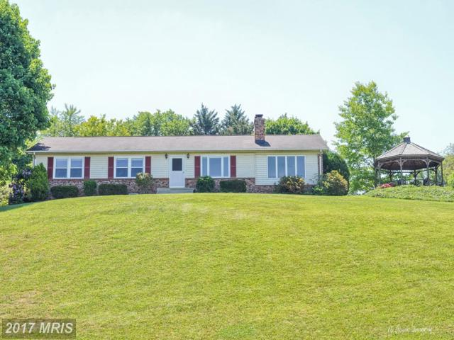 11780 Rowe Court, Monrovia, MD 21770 (#FR9955847) :: ReMax Plus