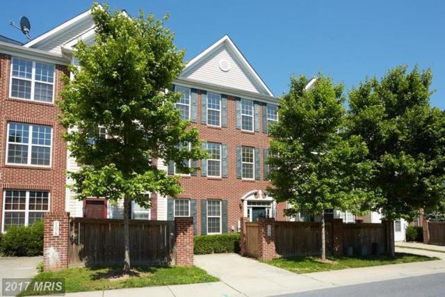 104 Featherstone Place, Frederick, MD 21702 (#FR9964956) :: LoCoMusings