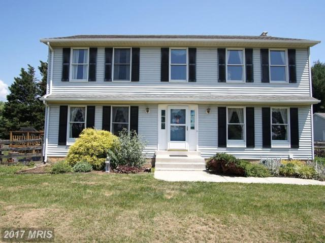 2404 Doubs Court, Adamstown, MD 21710 (#FR9976559) :: Pearson Smith Realty