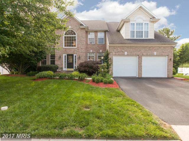 11068 Sanandrew Drive, New Market, MD 21774 (#FR9979018) :: Pearson Smith Realty