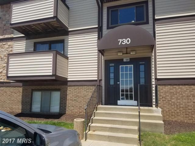 730-A Heather Ridge Drive 14A, Frederick, MD 21702 (#FR9979319) :: Pearson Smith Realty