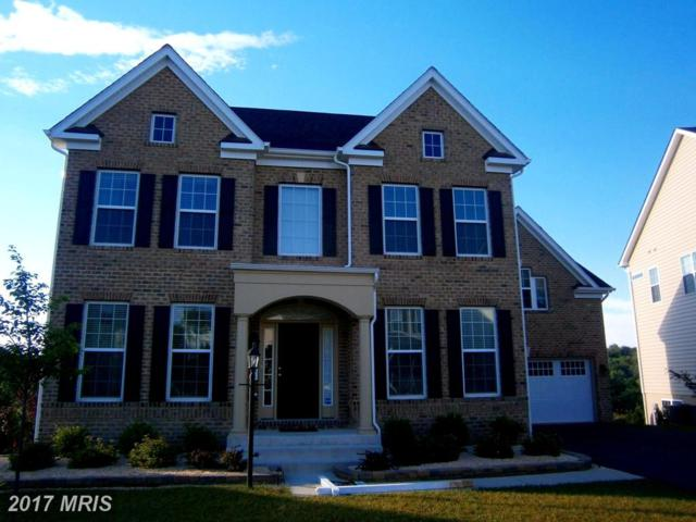 717 Sewell Drive, New Market, MD 21774 (#FR9982399) :: ReMax Plus