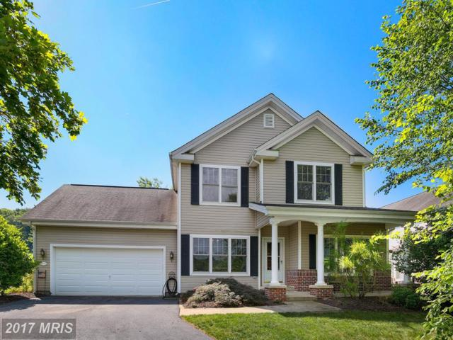 5651 Vineyard Court, New Market, MD 21774 (#FR9985171) :: Pearson Smith Realty