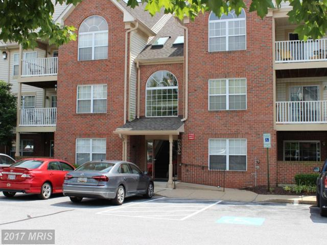 6509 Springwater Court #6303, Frederick, MD 21701 (#FR9987341) :: Charis Realty Group