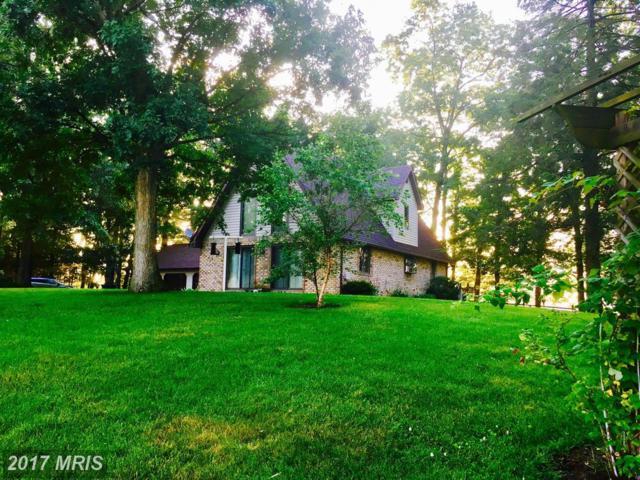 11534 Sipes Mill Road, Harrisonville, PA 17228 (#FU10001904) :: LoCoMusings