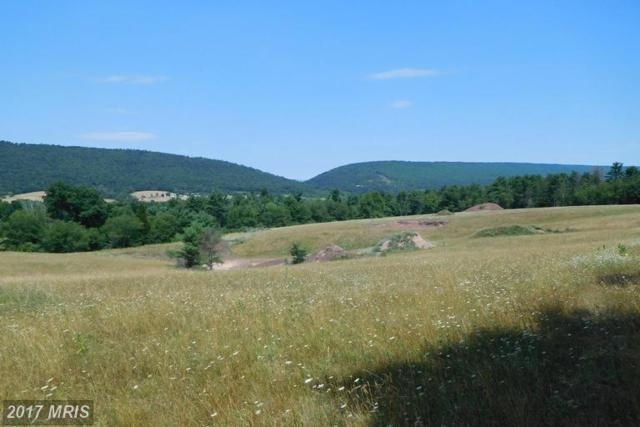 1112 Crystal View Drive, Crystal Spring, PA 15536 (#FU9728111) :: LoCoMusings