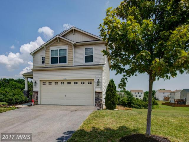 125 Dollie Mae Lane, Stephens City, VA 22655 (#FV10010975) :: Pearson Smith Realty