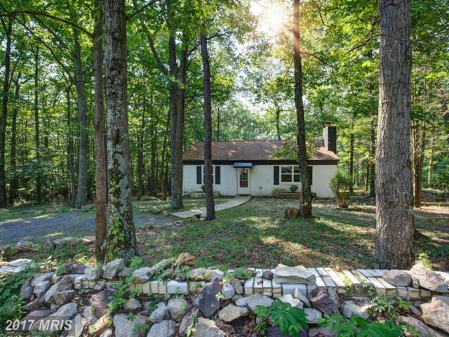 117 Cougar Trail, Winchester, VA 22602 (#FV10011431) :: Pearson Smith Realty