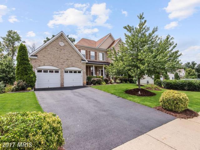 121 Nassau Drive, Winchester, VA 22602 (#FV10020848) :: Pearson Smith Realty