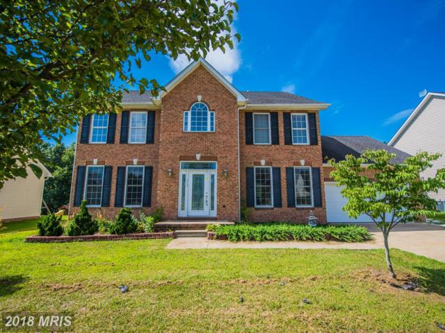 113 Falabella Drive, Stephens City, VA 22655 (#FV10036305) :: Keller Williams Pat Hiban Real Estate Group