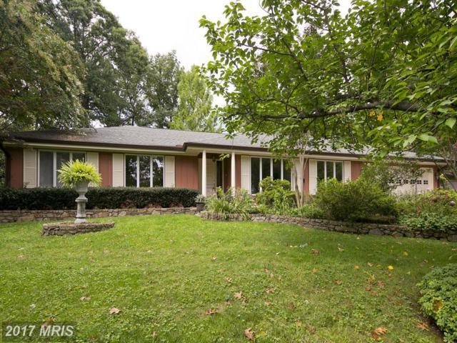 149 Stuart Drive, Winchester, VA 22602 (#FV10052082) :: Pearson Smith Realty