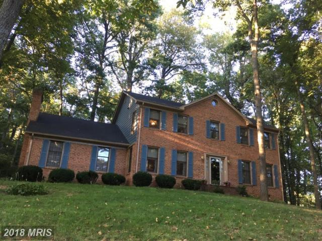 149 Old Forest Circle, Winchester, VA 22602 (#FV10065835) :: The Bob & Ronna Group