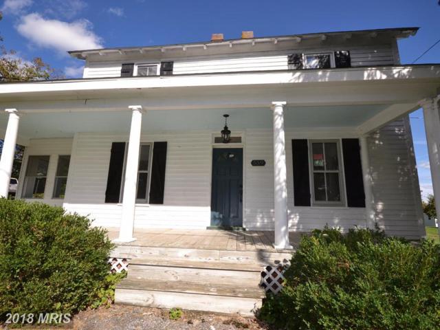 559 Salem Church Road, Stephens City, VA 22655 (#FV10083644) :: Pearson Smith Realty