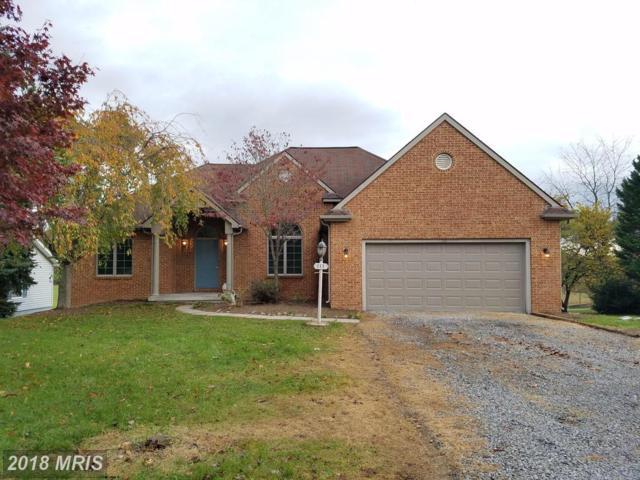 113 Masters Drive, Cross Junction, VA 22625 (#FV10096668) :: Pearson Smith Realty