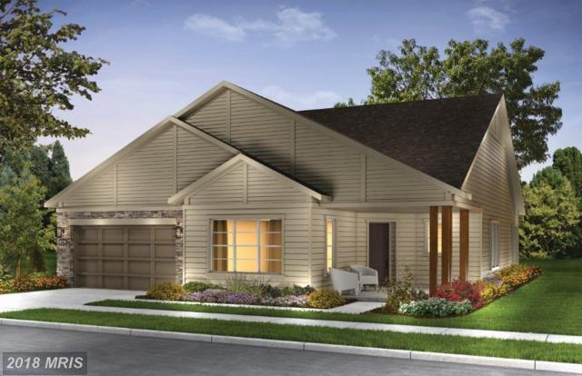 154 Towhee Drive, LAKE FREDERICK, VA 22630 (#FV10103727) :: Pearson Smith Realty